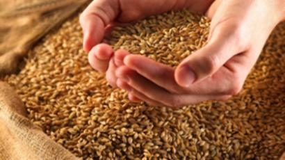 The impact of rising grain prices