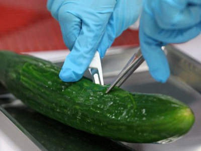 Russia bans European vegetables over infection risk