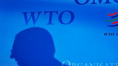 Russian agriculture sector will not suffer from WTO entry – Putin