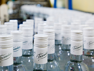 Synergy posts 1H 2011 net income of 976 million roubles, as spirits rise