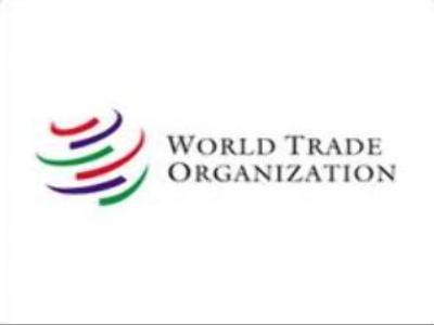 Talks on Russia's accession to WTO continue in Geneva