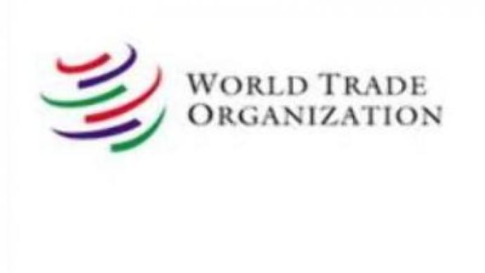 Talks on Russia's accession to WTO continue in Geneva