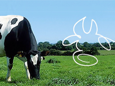 Unimilk posts FY 2009 net loss of 195 million roubles