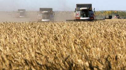 Russian and US drought sparks fears on a new food crisis