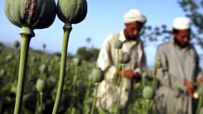 Russia slams NATO for losing Afghan opium war