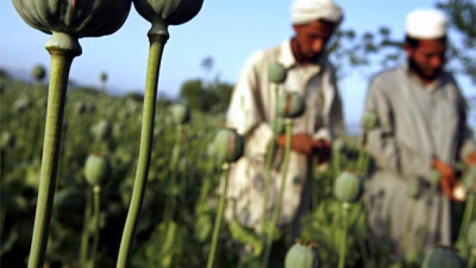 Afghanistan's export of mass destruction
