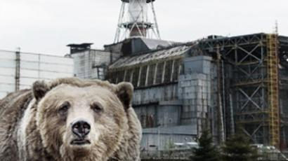 Chernobyl clean in 55 years time?