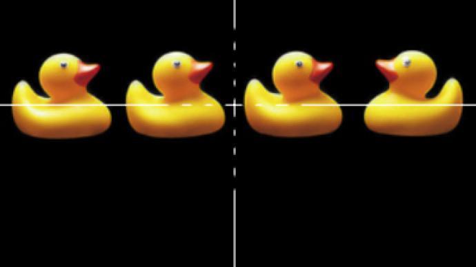 Decoy ducks provoke shootout