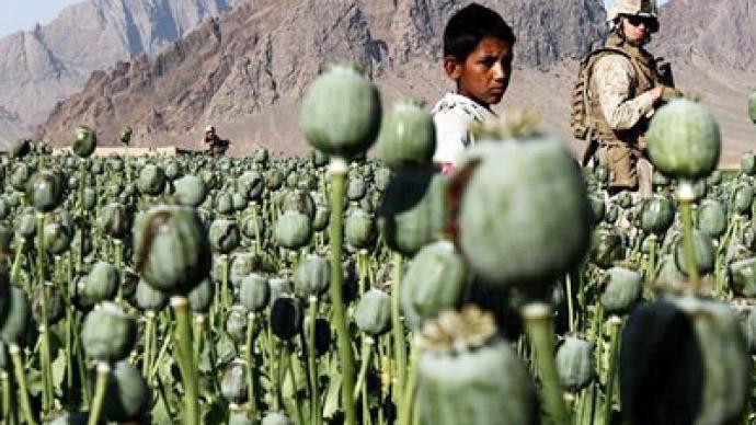 International synergy needed to win war on drugs