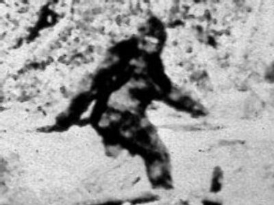 Bigfoot saved from drowning in icy Siberian river