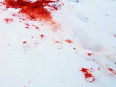 Four perish in Samara road accident