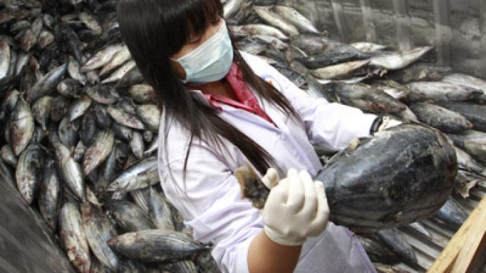 Fukushima fish carrying 258 times the 'safe' level of radiation