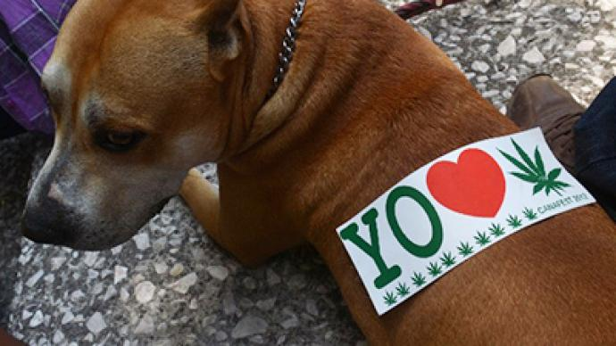 Germans say yes to dope; no to bestiality