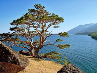 Global warming threatens Lake Baikal