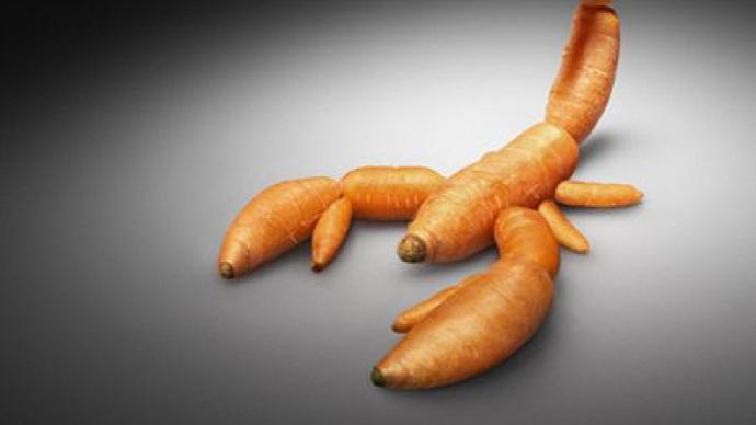 EU approved GMO crops under enormous US pressure – American author