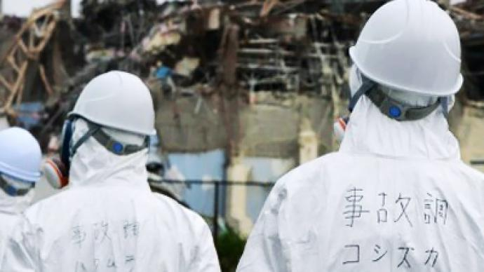 Japanese government too slow - IAEA