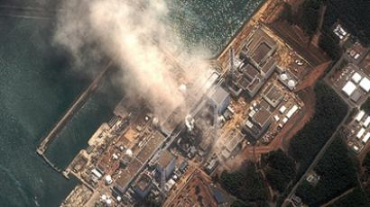 Facts on Fukushima plant key to emergency plan – former US governor