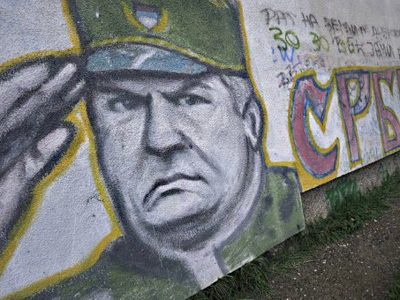 The Hague is very biased against Mladic - political analyst