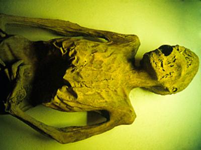 Mummy found in stolen car