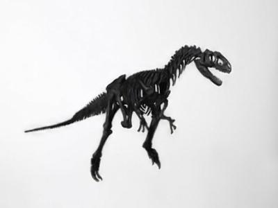 Dinosaur bonanza for Russia's Far East