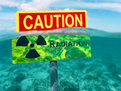 Russia ready to dispatch radiation processing vessel to Japan