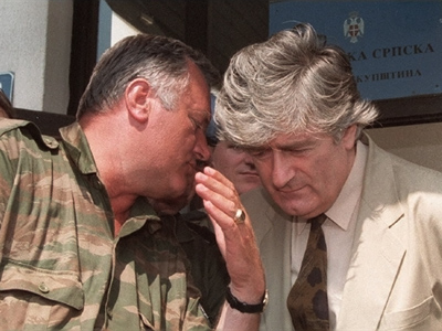 Mladic's case will be drawn-out and complicated – Karadzic's legal advisor