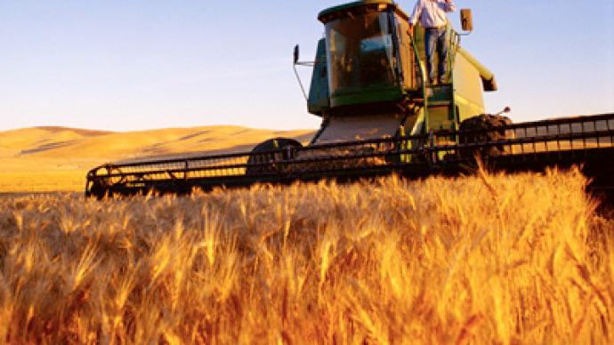 """Resumption of Russian grain exports will stabilize market"""