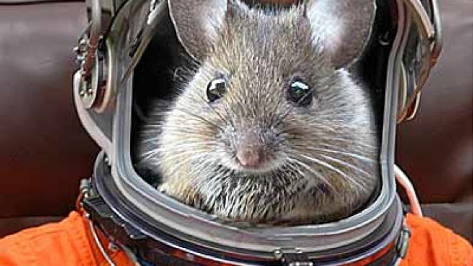 Russian rodents pave way for mission to Mars