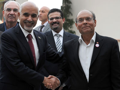 Tunisia and Libya delay formal recognition of Syrian opposition council