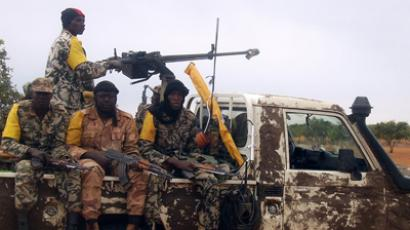 France: Mali intervention to last 'as long as necessary'