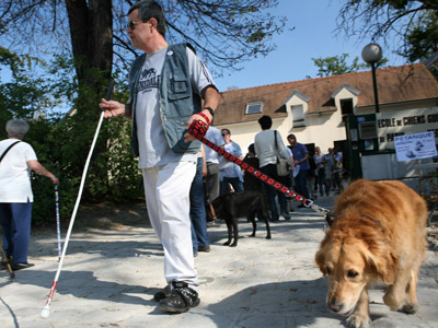'ACTA and SOPA for the blind': US, EU block treaty benefiting the visually impaired