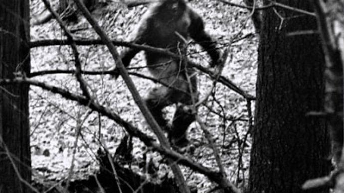 Bigfoot: unfound and unfounded — RT World News