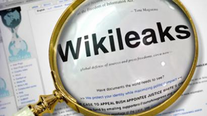 WikiLeaks lift curtains on American political autism - expert
