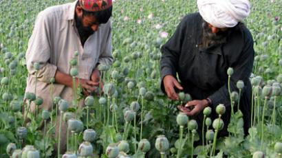 Afghanistan stores 40,000 tons of opiates – Russia's drug watchdog