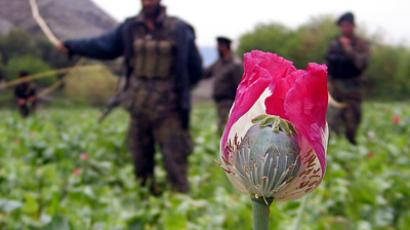 Russia's war on Afghan heroin heats up