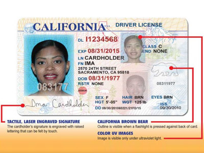 — Licenses For News California Illegal Drivers' Young Rt To Start Immigrants Issuing Usa