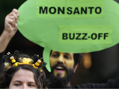 Monsanto wins California: GMO labeling law defeated
