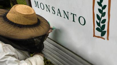 Supreme Court sympathizes with Monsanto in seed patent case