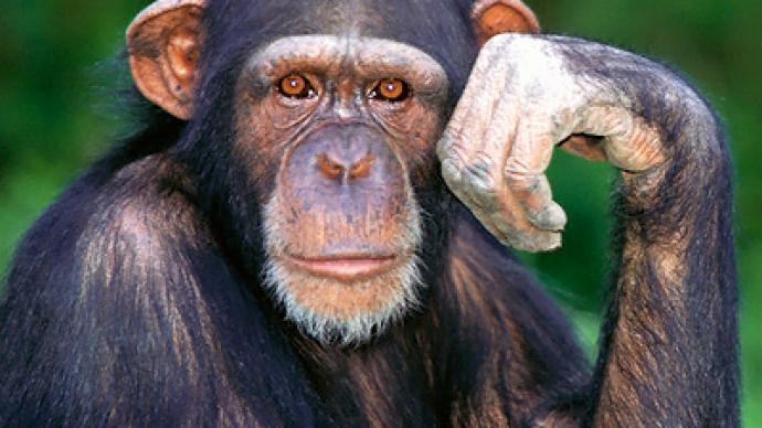 GOP official depicts Obama as a chimp