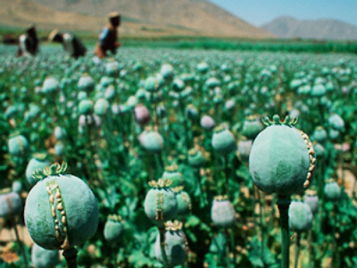 UN report: Russia becomes largest market for Afghan heroin
