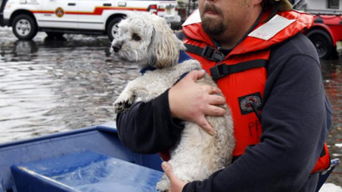 Hurricane Sandy leaves thousands of pets in need (PHOTOS)