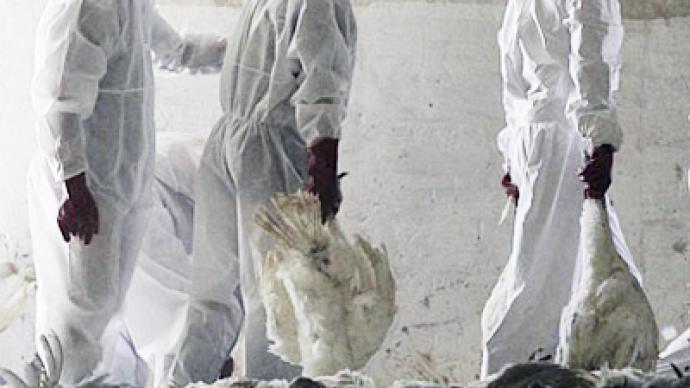 Bird flu mutation study stopped in fear of deadly global outbreak