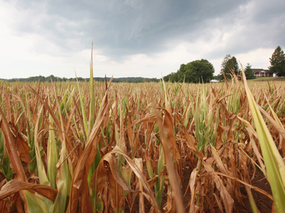 Record drought may leave more Americans hungry