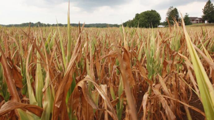 US drought might lead to food shortages and global unrest