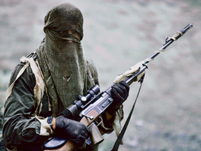 Eight militants eliminated in Ingushetia