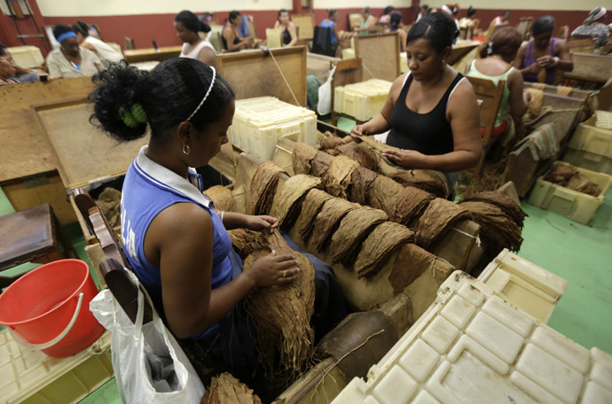 Women sort tobacco leaves at the Corona cigar factory in Havana (Reuters)