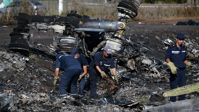'Too good opportunity to miss': MH17 blame game has political motives, may lead to war