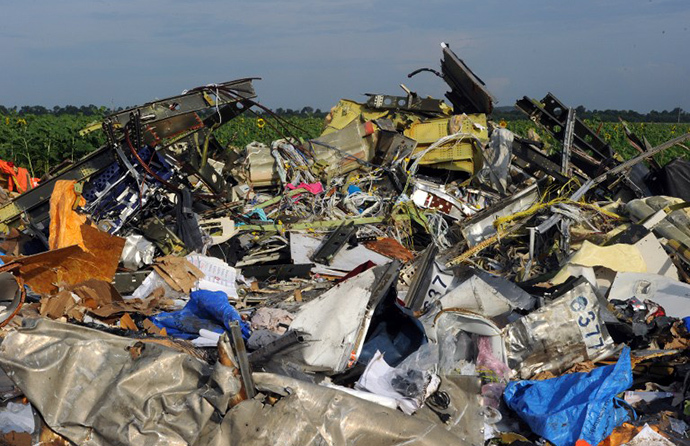 A single shoe is seen on July 19, 2014 at the wreckage of Malaysia Airlines flight MH17 two days after it crashed in a sunflower field near the village of Rassipnoe, in rebel-held eastern Ukraine. (AFP Photo / Dominique Faget)