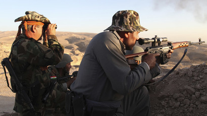 The Ultima Irratio: On Germany's decision to arm Iraqi Kurds