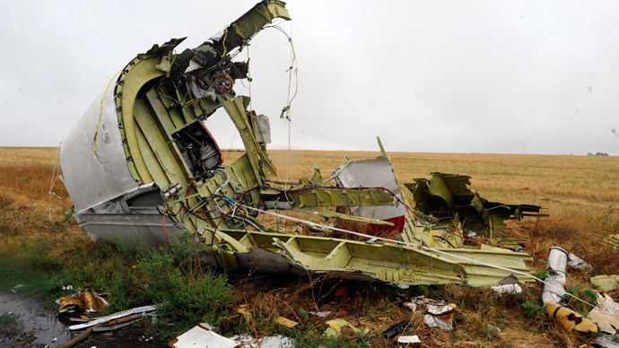 German's BND 'evidence' on MH17 tragedy looks like another disinformation operation
